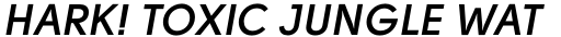 Solomon Sans SemiBold Italic sample