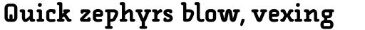 FF Alega Serif Pro Bold sample