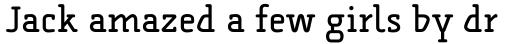 FF Alega Serif Pro sample