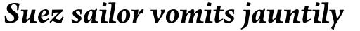 FF Angkoon OT Bold Italic sample