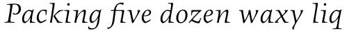 FF Angkoon OT Italic sample