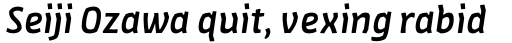 FF Amman Sans Pro Med Italic sample