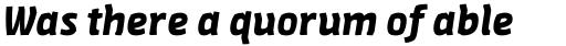 FF Amman Sans Pro Bold Italic sample