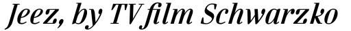 FF Danubia OT Bold Italic sample