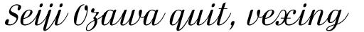 FF Danubia Script OT sample