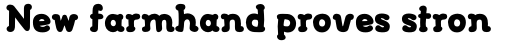FF Font Soup Catalan OT ExtraBold sample
