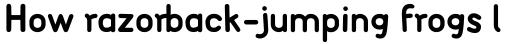 FF Font Soup German OT Bold sample