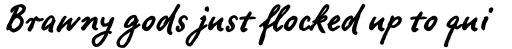 FF Ropsen Script OT Bold sample