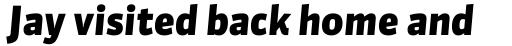 FF Sanuk Pro Black Italic sample