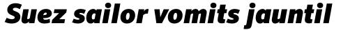 FF Sero Pro Black Italic sample