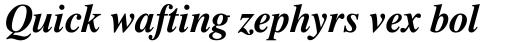 Dutch 801 WGL4 Bold Italic sample