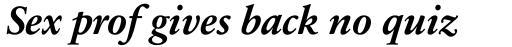 Sabon Next LT Bold Italic OsF sample