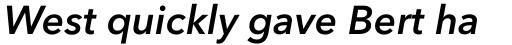 Avenir Next Pro Demi Italic sample