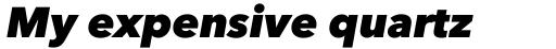 Avenir Next Pro Heavy Italic sample