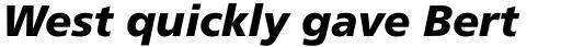 Frutiger Pro 76 Black Italic sample
