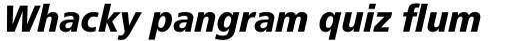 Frutiger Pro 78 Black Condensed Italic sample