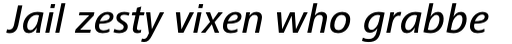 Frutiger Next Pro Medium Italic sample