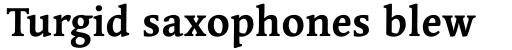 Linotype Syntax Serif Std Bold sample