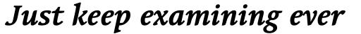 Linotype Syntax Serif Std Bold Italic sample