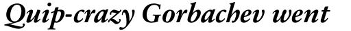 Sabon Next Pro Bold Italic sample