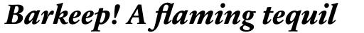 Sabon Next Pro ExtraBold Italic sample