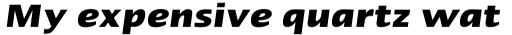 Linotype Ergo Pro Bold Condensed Italic sample