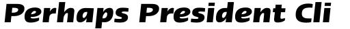 Linotype Ergo Pro Bold Italic sample
