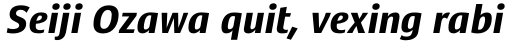 Satero Sans Pro Bold Italic sample