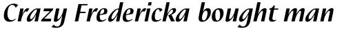 Linotype Nautilus Pro Bold Italic sample
