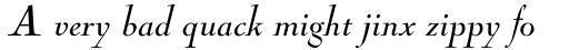 Nicolas Cochin Pro Italic sample