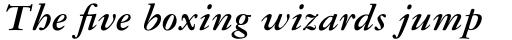 Garamond #3 Pro Bold Italic sample