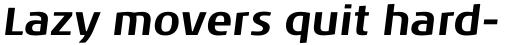 Noa Pro Bold Oblique sample