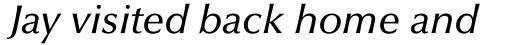Optima Pro Medium Italic sample