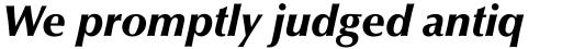 Optima Pro Black Italic sample