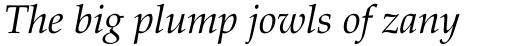 Palatino Pro Italic sample