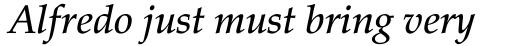 Palatino Pro Medium Italic sample