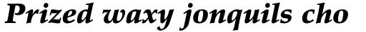 Palatino Pro Black Italic sample