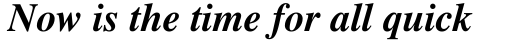 Times Pro Bold Italic sample