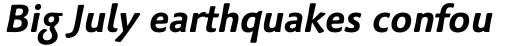 Palatino Sans Pro Bold Italic sample