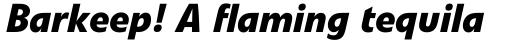 Veto Pro Bold Italic sample