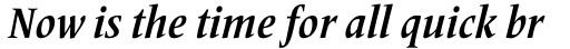 Frutiger Serif Pro Condensed Bold Italic sample