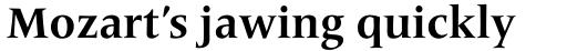 Frutiger Serif Pro Bold sample