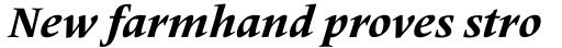 Frutiger Serif Pro Heavy Italic sample