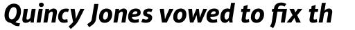 Aptifer Sans Pro Bold Italic sample
