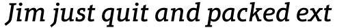 Aptifer Slab Pro Medium Italic sample
