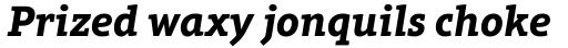 Aptifer Slab Pro Bold Italic sample