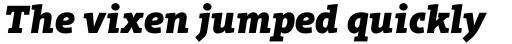 Aptifer Slab Pro Black Italic sample