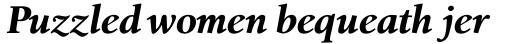 Birka Pro Bold Italic sample