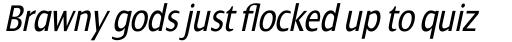 Dialog Pro Condensed Italic sample