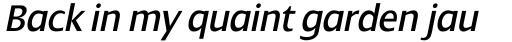 Dialog Pro Italic sample